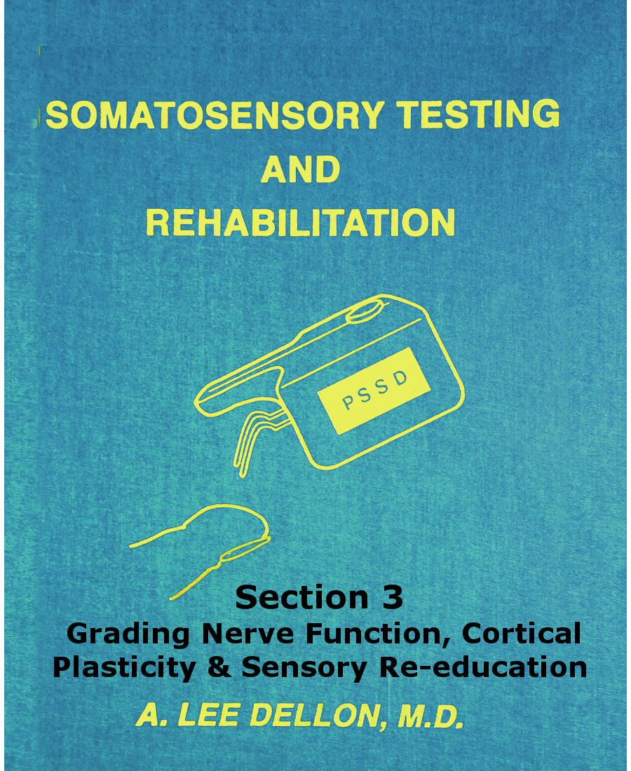 somatosensory testing section3